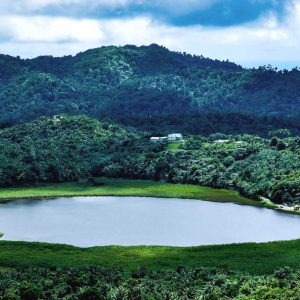 Why Grand Etang Lake Is a Must-See on Your Next Visit to Grenada