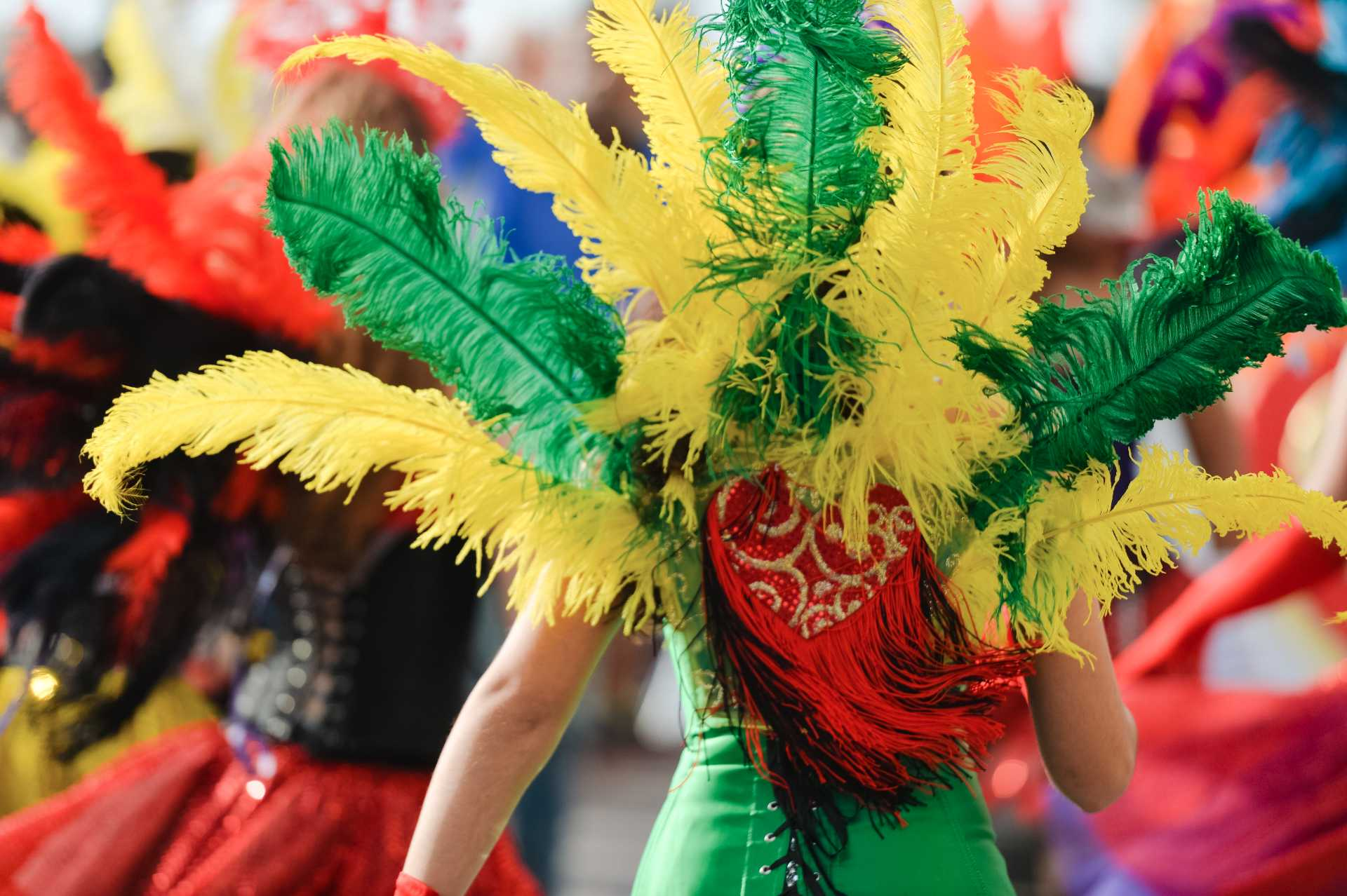The back of a woman dressed in feathers for a Spicemas parade