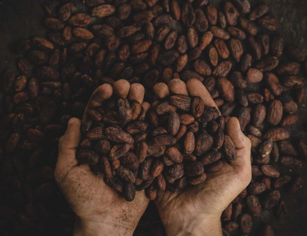 Handful of cocoa chocolate beans. Photo by Pablo Merchán Montes on Unsplash